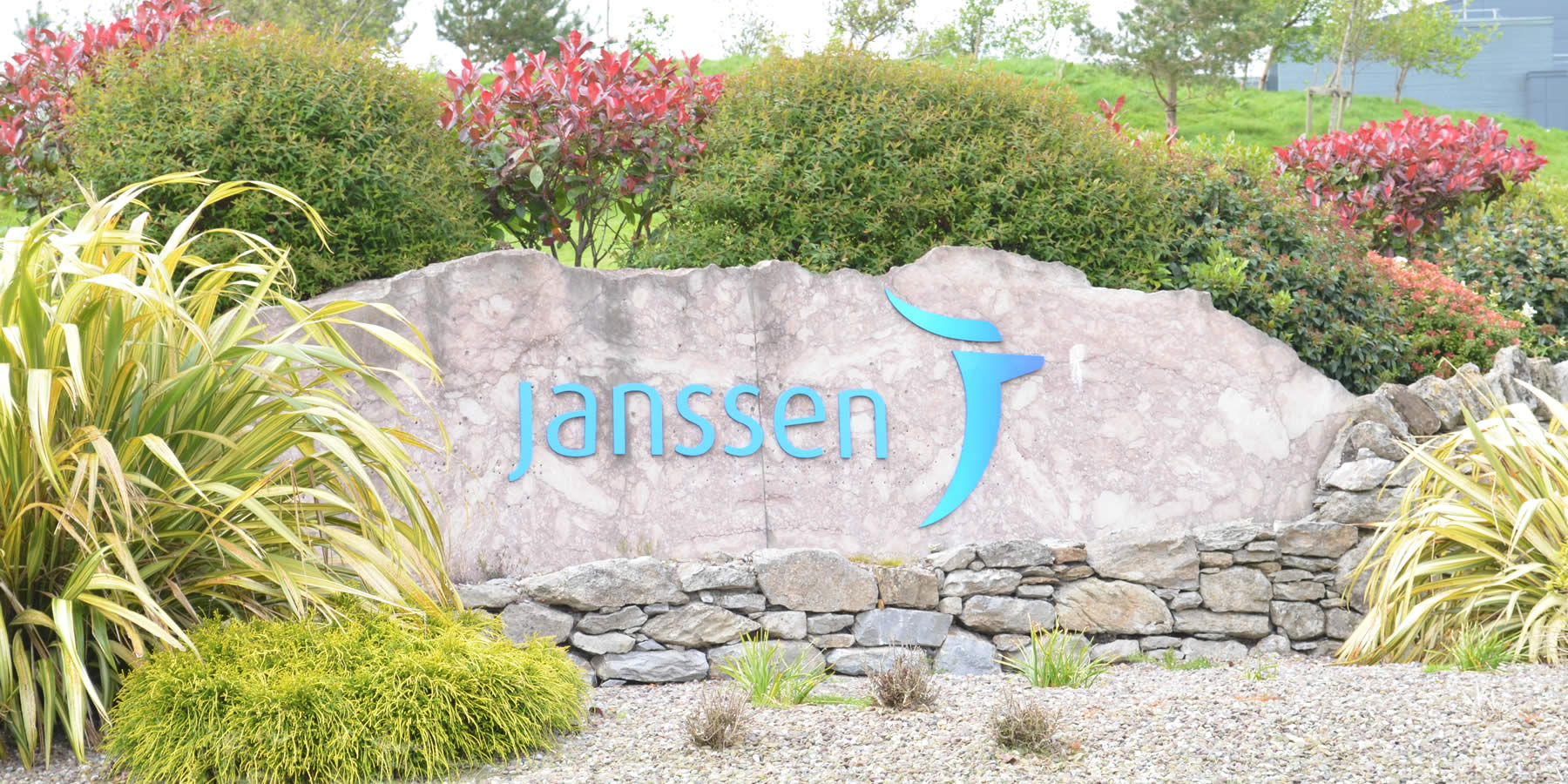 Janssen Biologics Ringaskiddy Images